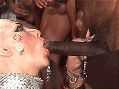 Sex, From, Group, Gets, Hardcore, Bald, Fucked, Group Sex