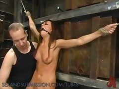 Sadism, Submission, Masochis, Bondage, Domination, Bdsm